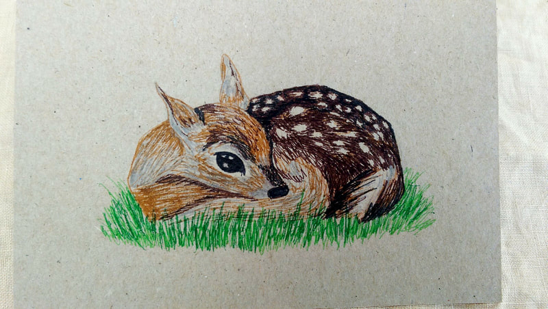 An illustration of a fawn curled up on some grass drawn on recycled cardboard.